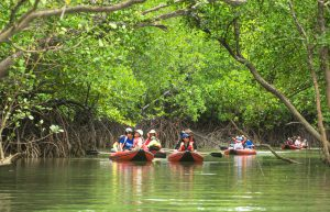 Remain a choice destination during trying times with ecotourism public relations.