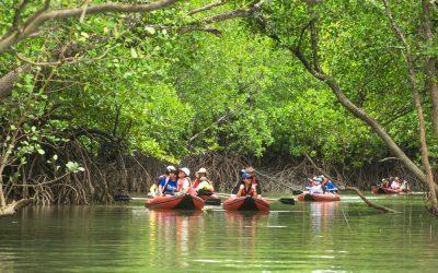 Can Ecotourism Public Relations Help Navigate Delta?