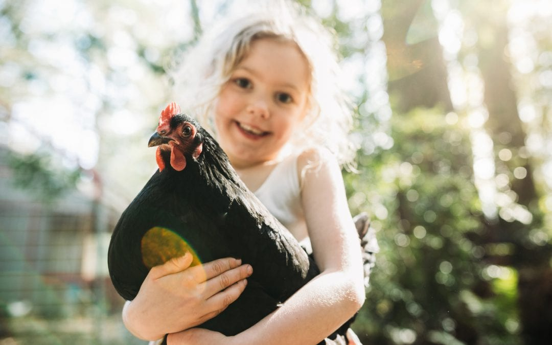 Girl holds pet hen