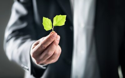 Why promoting ESG with green public relations matters
