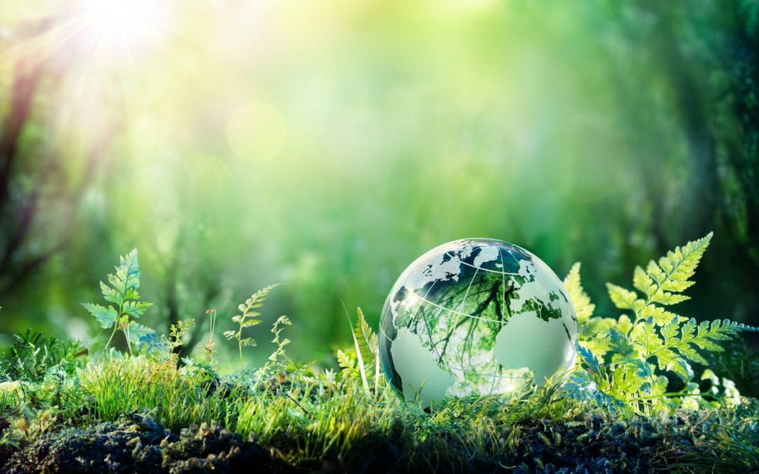 Why Promoting Your Environmental Brand is More Important Now than Ever