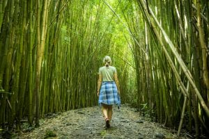 Traveler walking through forest after reading story on ecotourism