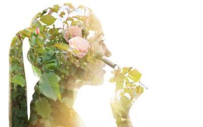Looking Toward a Sustainable Future