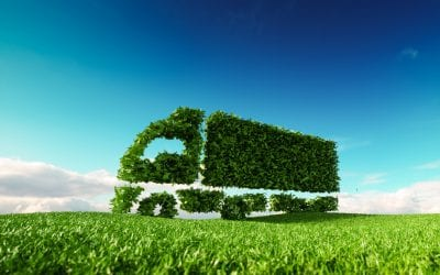 Promote the Sustainability of Your Green Supply Chain