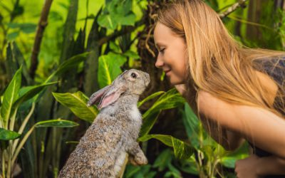 Building a Brand with Cruelty-Free Public Relations