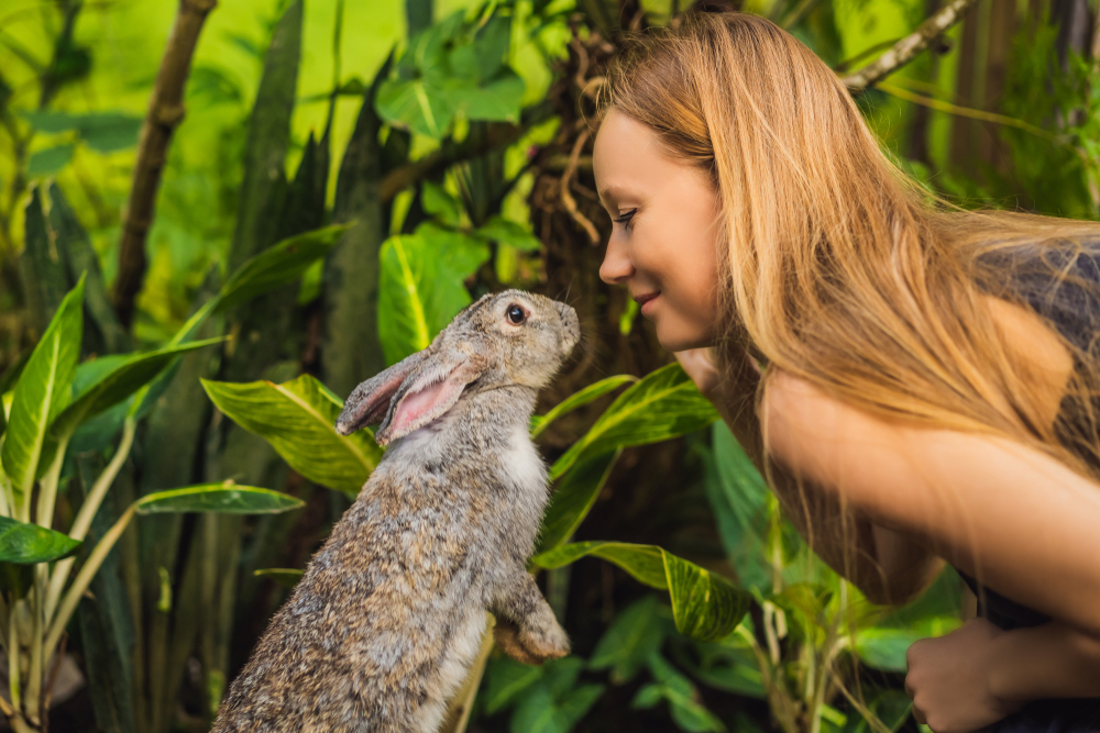 Cruelty-free public relations can further your brand.